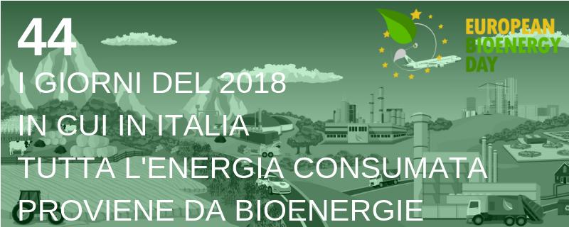 Bioenergie nella produzione energetica sostenibile.